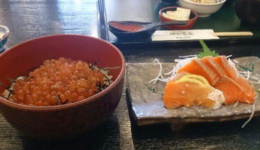 新潟に行くならここへ行こう!イヨボヤ会館で鮭を見て、サーモンハウスで鮭とイクラを食べる!